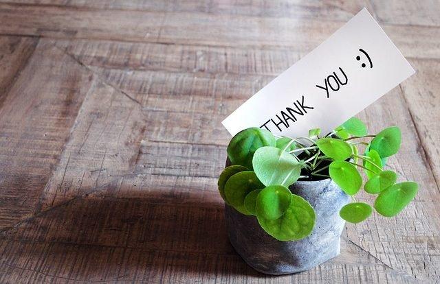 Frases De Agradecimento Para Clientes Exemplos E Dicas Com Tudo O